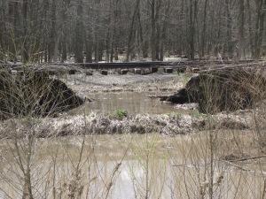 Flooding 13' part 1 013