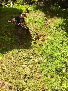 Colton weed-eating