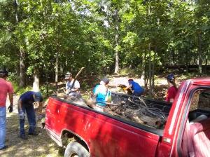 Loading up TRUCK LOADS of wood to burn