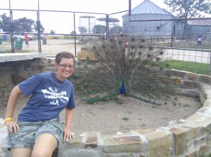me and the peacock