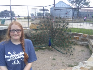 Lillie and the peacock