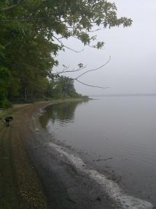 Lake Senachwine