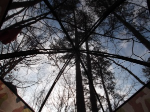 looking up, from the inside of the tent