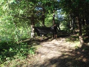 Graham's backpacking hammock