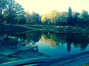 Shannon took this picture of the pond